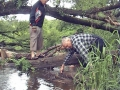 Lopasnia 2008-s17.jpg