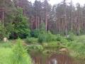 Nerskaia 2009-s2.jpg