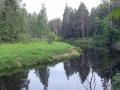 Polia 2012-s14.jpg